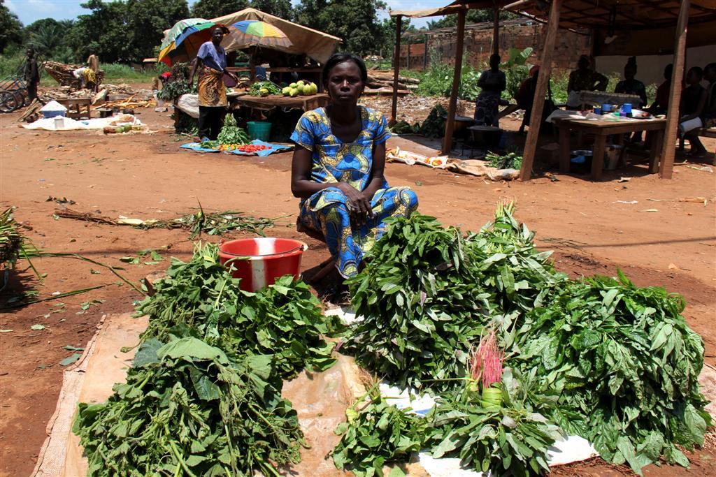 marché - Bangui - RCA - Sept 2013 - LGR (12) (Large)