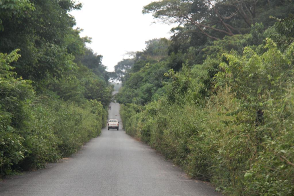 route Kemo - RCA - septembre 2013 - LGR (1) (Large)