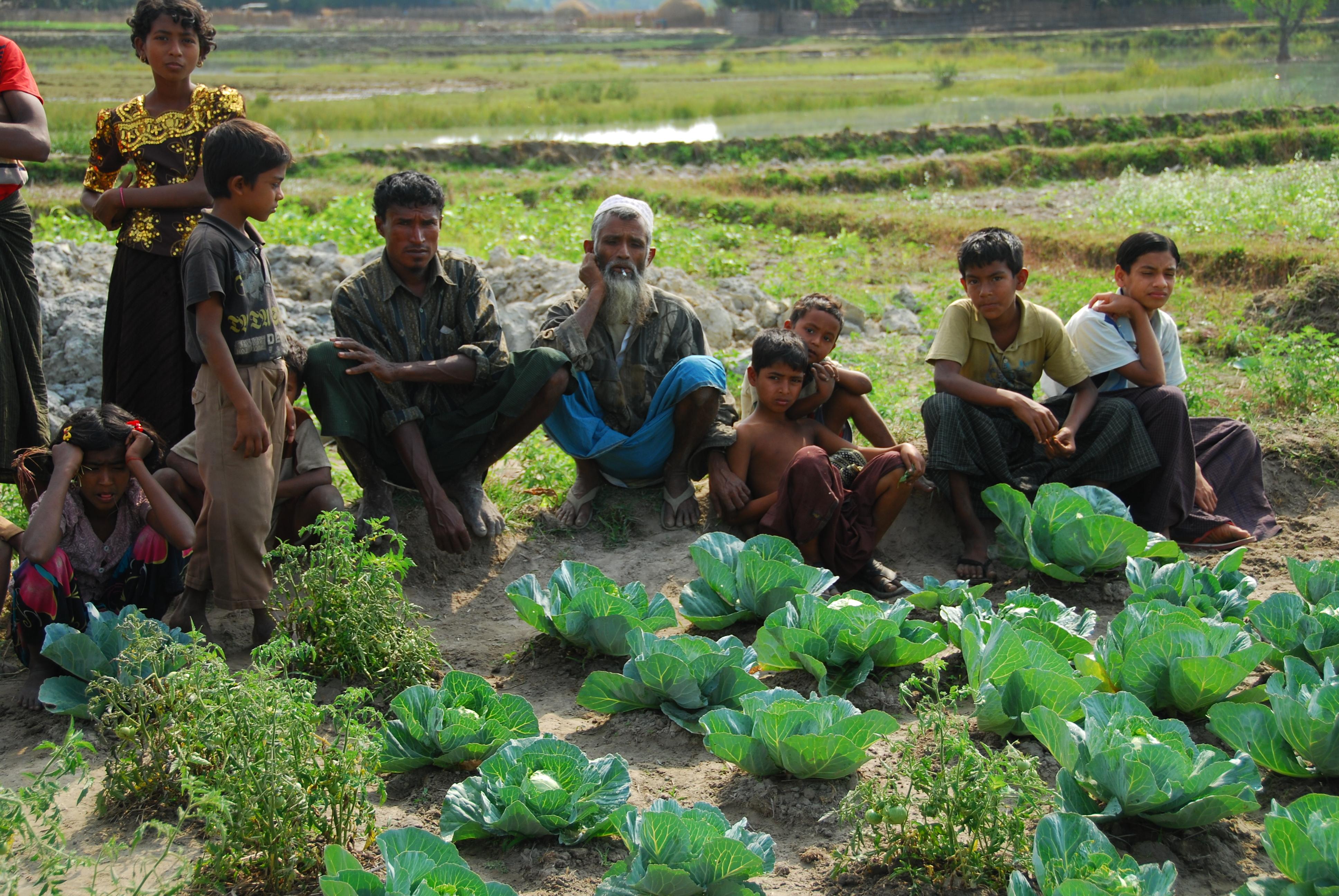 Notre intervention au Myanmar - Action contre la Faim